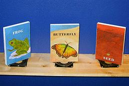 Children's Museums Exhibit Portfolio - Paul Orselli